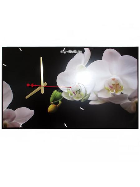 "TIME 2 GO 1015 ""Орхидея белая"""